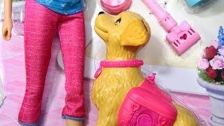 Potty Trainin` Taffy / Barbie Z Pieskiem Www.MegaDyskont