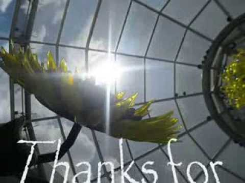 Phipps Conservatory Glass in Garden eXibition-Pittsburgh City Tour eXperience