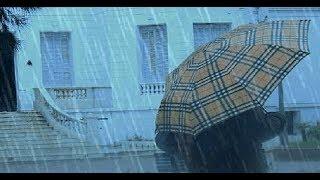 أحوال الطقس : 13 مارس 2018   |   الطقس