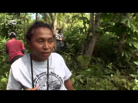 Snorkeling in School - Lessons on Palau | Global 3000