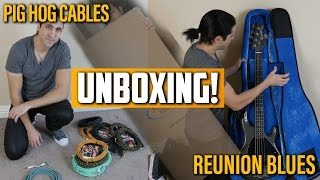 Unboxing Reunion Blues Voyager Gig Bag / Case and Pig Hog Cables