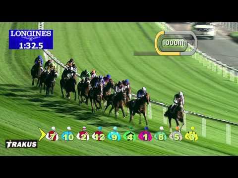 Vidéo de la course PMU GN FOCUS