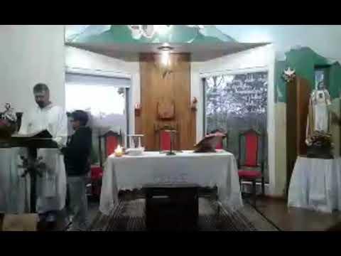Santa Missa | 08.09.2020 | Terça-feira | Padre Paulo Sérgio Mendes da Silva | ANSPAZ