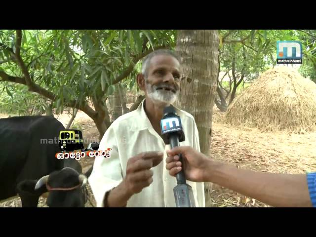 Autovote tours through Palakkad's soul