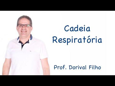 Cadeia Respiratória para o ensino superior