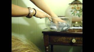 How To Repair Your Synthetic*Hair!