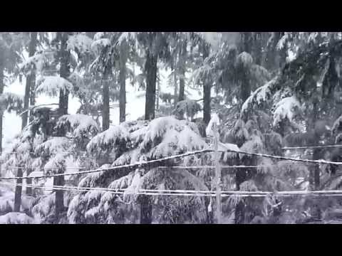 Snow fall at Manali, Himachal Pradesh, India