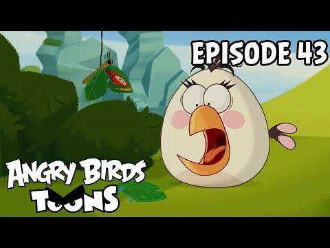 Angry Birds # 43 - Efekt motýla