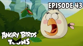 Angry Birds #43 - Efekt motýľa