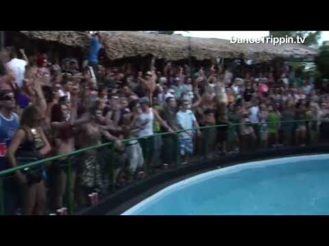 Jose de Divina, Jonathan Tena and others / Zoo Project (Ibiza Party Music)