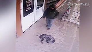 В Приморье возбуждено уголовное дело о краже домашнего питомца