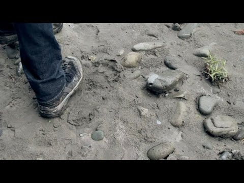 'BigFoot: The Lost Coast Tapes' Trailer HD