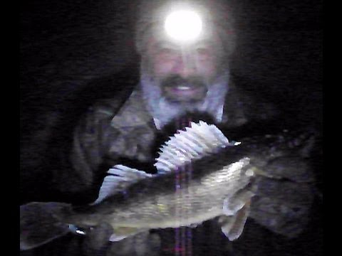 Night time ice fishing walleyes youtube for Ice fishing at night