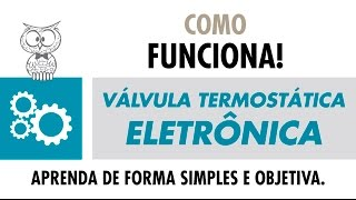 COMO FUNCIONA – Válvula Termostática FORD VT525