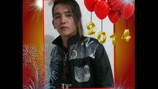 Happy Chinese New Year 2014 Vol.2