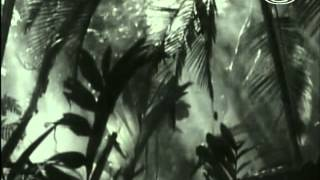 Zvierací rekordmani - Hryzáči