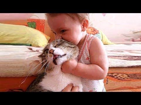 Baby and Cat Fun and Fails 😻 Funny Baby Video