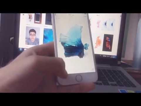 Hướng dẫn làm hình nền động con cá giống iphone 6s (Set Wallpaper iphone 6s fish on iphone 6)