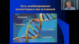 """""""Практический курс ДНК-генеалогия"""" - лекция 2"""