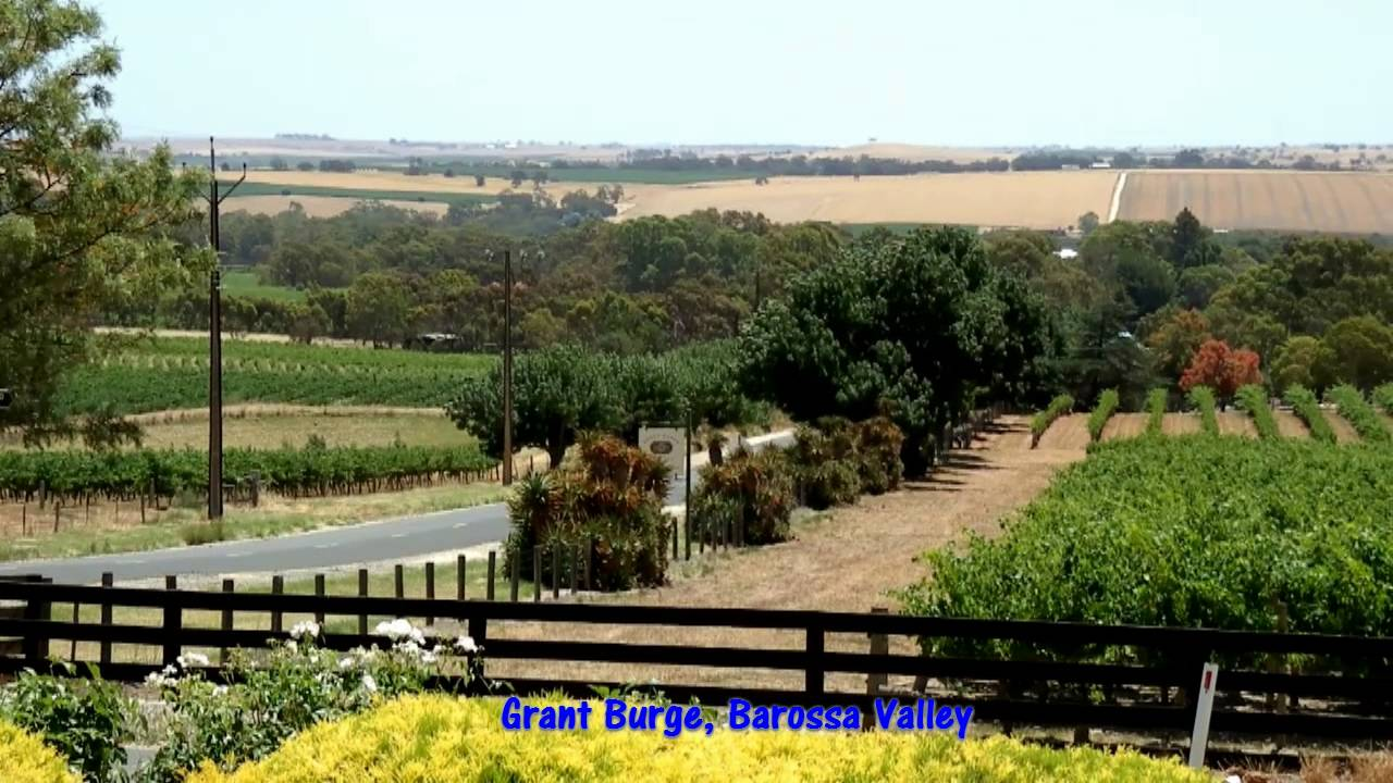 Barossa Valley Australia  city photos gallery : South Australia Wine Tours McLaren Vale, Barossa Valley, Adelaide ...