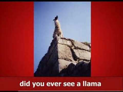 Llama Song (with official MP3), by Burton Earny MP3 with lyrics: http://www.albinoblacksheep.com/audio/llama See the original high quality and looping version here: http://www.albinoblacksh...