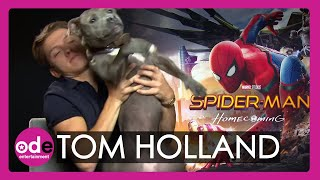Spider-Man: Tom Holland brings his dog to our interview