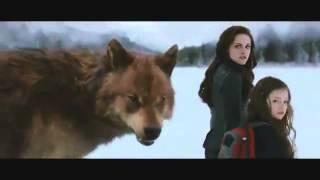 The Twilight Saga Breaking Dawn Part 2 (Full Official
