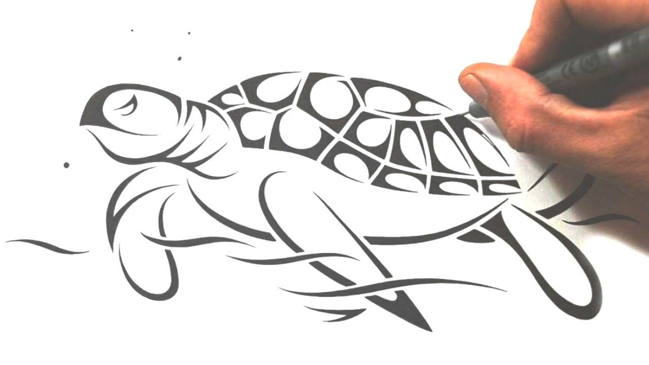 Sea Turtle Drawing Tutorial Images amp Pictures Becuo