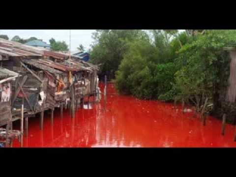 The Water Of The River Be Come Red In KALIMANTAN INDONESIA