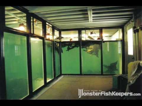 10 000 gallon fish tank for sale 50000 15000 gallon for 10 gallon fish tank for sale