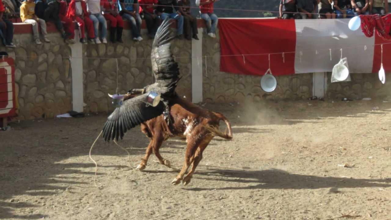 Las corridas de san isidro - 1 4