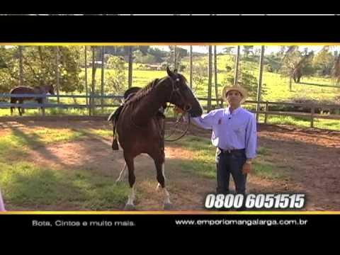 Empório Mangalarga - A loja oficial do Cavalo de Sela Brasileiro [COMPLETO 2de2]