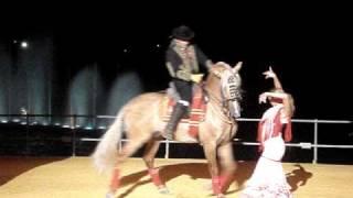 Mujer Bailando Sevillanas Con Caballo