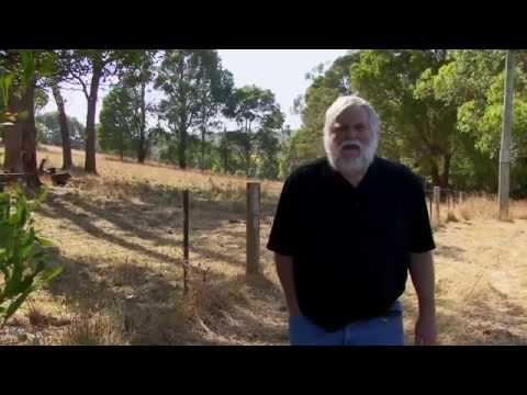 APV Films Masterclass - Pastel Trees with Maxwell Wilks