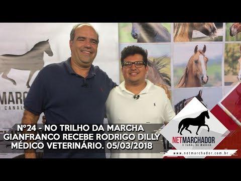 #24 - NO TRILHO DA MARCHA COM RODRIGO DILLY - MÉDICO VETERINÁRIO - 05/03/2018 - MANGALARGA MARCHADOR