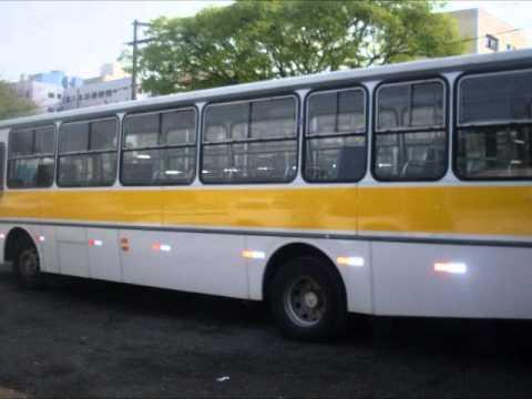 Ônibus Escolar e Metra Class