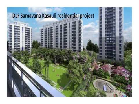 DLF Samavana Kasauli Apartment Price9810501285