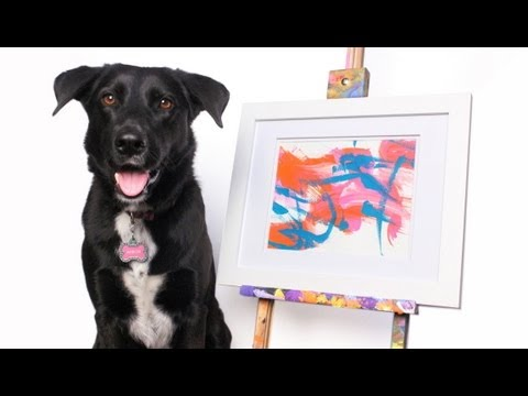 Arbor the Painting Dog Paints for Canine Cancer | Morris Animal Foundation Charity Auction