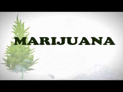 The Truth and Facts of Marijuana