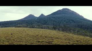 The Hunter (2011) Official Trailer HD