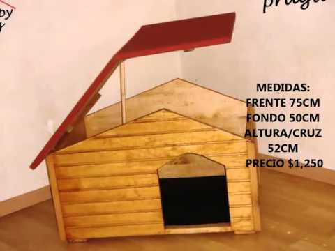 Como hacer casas para perros big youtube - Ideas de casas ...