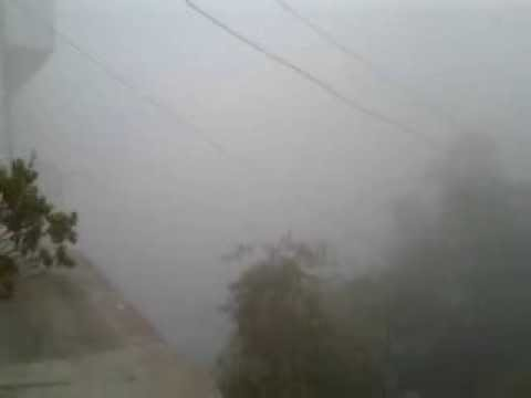Foggy Delhi weather 02/02/2014