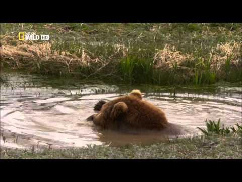 Krásy divokého Ruska - Kamčatka