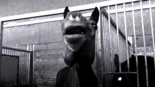 Oppa HorseGang Style