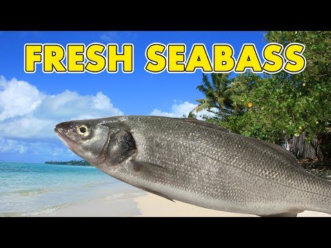 Fresh Sea Bass (Banished Gameplay | Part 4)