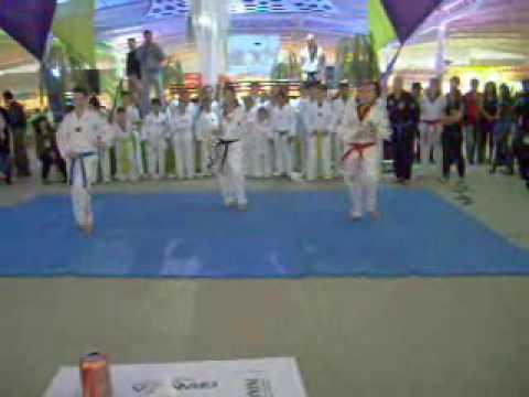 Feira do bordado de Ibitinga 2009 - Apresentaçao de Taekwondo e Hapkido.