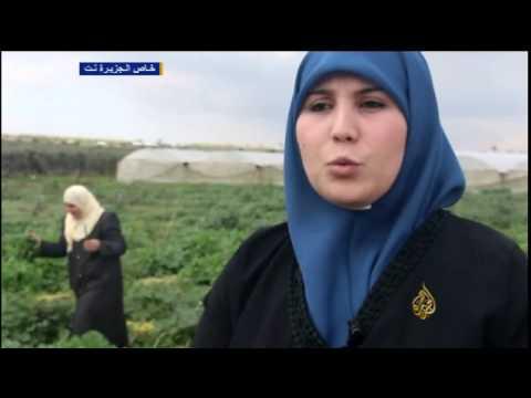 مقابلة ايات حجازي على الجزيرة