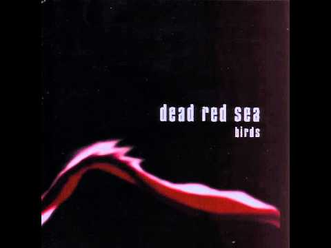 Dead Red Sea - Brightside