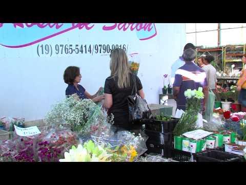 Vendas de flores devem aumentar no dia das m�es
