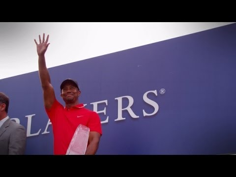 Tiger Woods' impressive 2013 season
